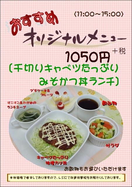 みそかつ丼 (2) (452x640)
